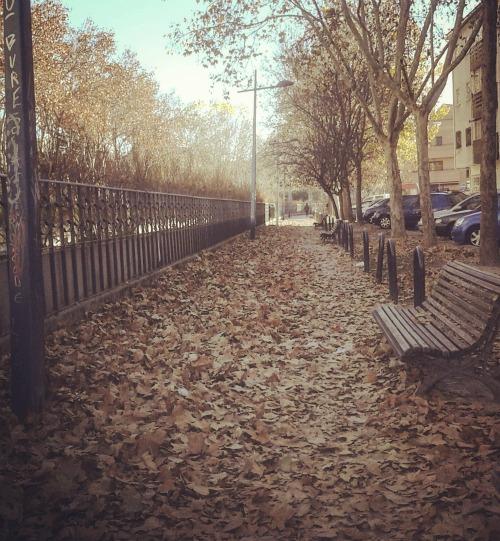 Madrid no outono
